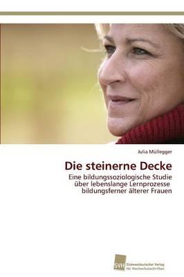 Die Steinerne Decke (Paperback)