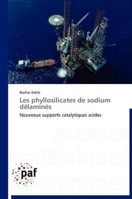 Les Phyllosilicates de Sodium Delamines - Omn.Pres.Franc. (Paperback)