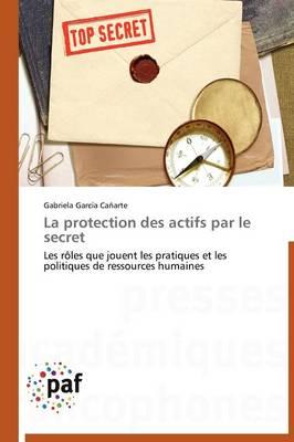 La Protection Des Actifs Par Le Secret - Omn.Pres.Franc. (Paperback)