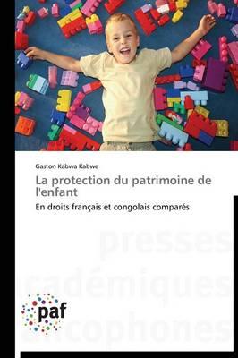 La Protection Du Patrimoine de l'Enfant - Omn.Pres.Franc. (Paperback)
