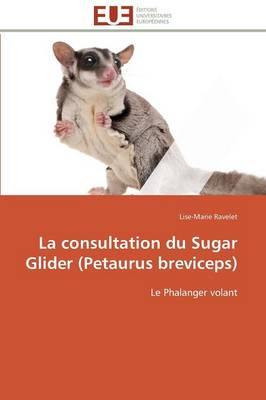 La Consultation Du Sugar Glider (Petaurus Breviceps) - Omn.Univ.Europ. (Paperback)
