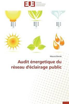 Audit �nergetique Du R�seau d'�clairage Public - Omn.Univ.Europ. (Paperback)