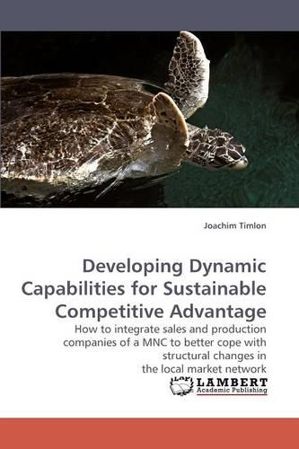 Developing Dynamic Capabilities for Sustainable Competitive Advantage (Paperback)