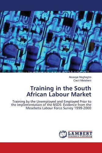 Training in the South African Labour Market (Paperback)