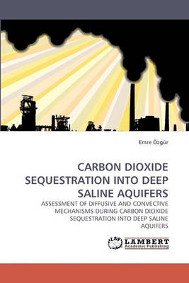 Carbon Dioxide Sequestration Into Deep Saline Aquifers (Paperback)