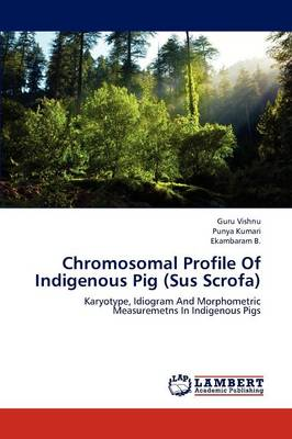 Chromosomal Profile of Indigenous Pig (Sus Scrofa) (Paperback)