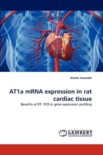 At1a Mrna Expression in Rat Cardiac Tissue (Paperback)