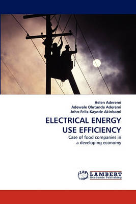 Electrical Energy Use Efficiency (Paperback)