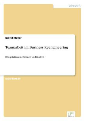 Teamarbeit Im Business Reengineering (Paperback)