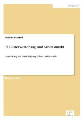 EU-Osterweiterung und Arbeitsmarkt: Auswirkung auf Beschaftigung, Loehne und Betriebe (Paperback)