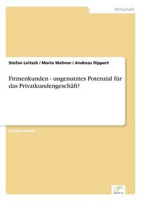 Firmenkunden - Ungenutztes Potenzial F r Das Privatkundengesch ft? (Paperback)