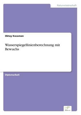 Wasserspiegellinienberechnung Mit Bewuchs (Paperback)