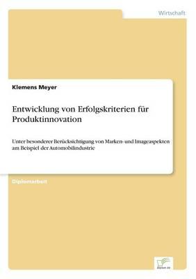 Entwicklung Von Erfolgskriterien Fur Produktinnovation (Paperback)