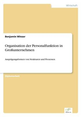 Organisation Der Personalfunktion in Gro unternehmen (Paperback)