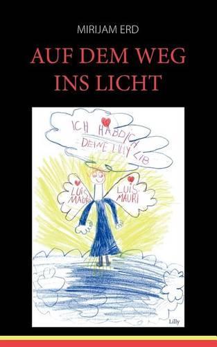 Auf Dem Weg Ins Licht (Paperback)