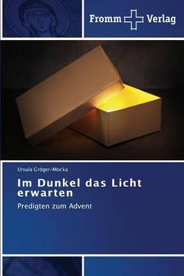Im Dunkel Das Licht Erwarten (Paperback)