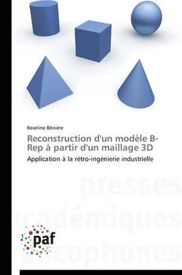 Reconstruction d'Un Mod le B-Rep Partir d'Un Maillage 3D - Omn.Pres.Franc. (Paperback)