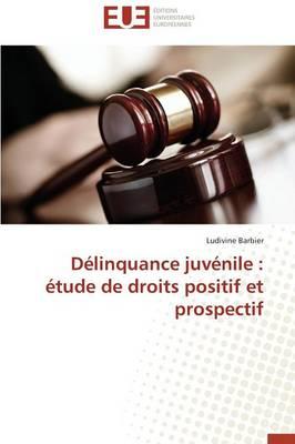 D�linquance Juv�nile: �tude de Droits Positif Et Prospectif - Omn.Univ.Europ. (Paperback)