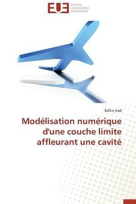 Mod�lisation Num�rique d'Une Couche Limite Affleurant Une Cavit� - Omn.Univ.Europ. (Paperback)