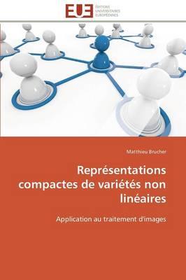 Repr�sentations Compactes de Vari�t�s Non Lin�aires - Omn.Univ.Europ. (Paperback)