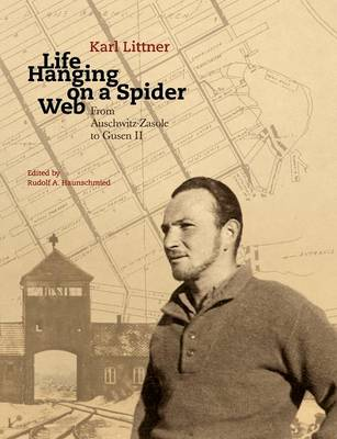Life Hanging on a Spider Web (Paperback)