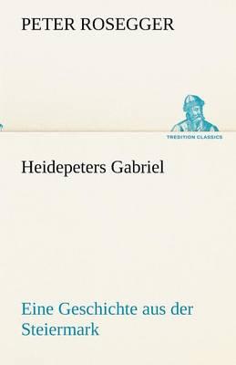 Heidepeters Gabriel (Paperback)
