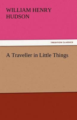 A Traveller in Little Things (Paperback)