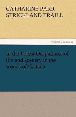In the Forest Or, Pictures of Life and Scenery in the Woods of Canada (Paperback)