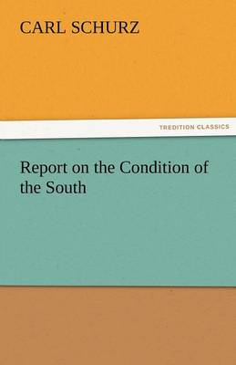 Report on the Condition of the South (Paperback)