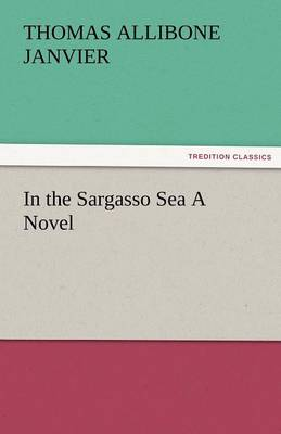 In the Sargasso Sea a Novel (Paperback)