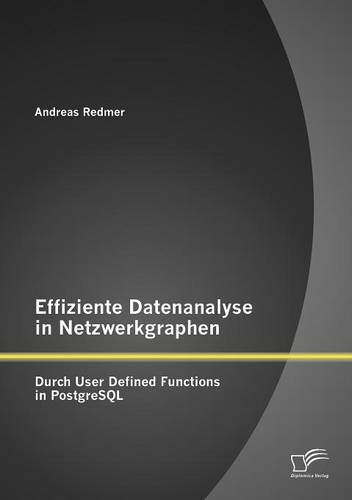 Effiziente Datenanalyse in Netzwerkgraphen: Durch User Defined Functions in PostgreSQL (Paperback)