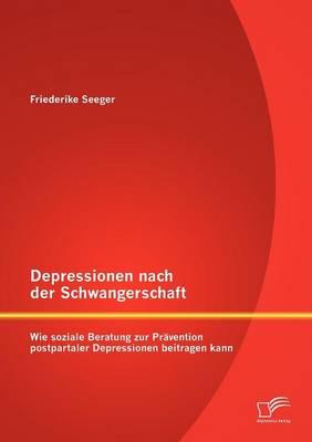 Depressionen Nach Der Schwangerschaft: Wie Soziale Beratung Zur Pravention Postpartaler Depressionen Beitragen Kann (Paperback)