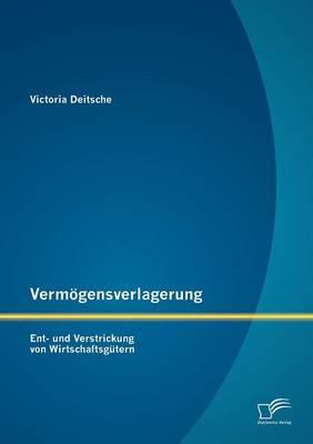 Verm Gensverlagerung: Ent- Und Verstrickung Von Wirtschaftsg Tern (Paperback)