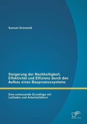 Steigerung Der Nachhaltigkeit, Effektivitat Und Effizienz Durch Den Aufbau Eines Bauprozesssystems: Eine Umfassende Grundlage Mit Leitfaden Und Arbeit (Paperback)