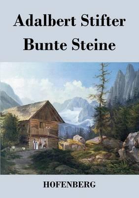 Bunte Steine (Paperback)