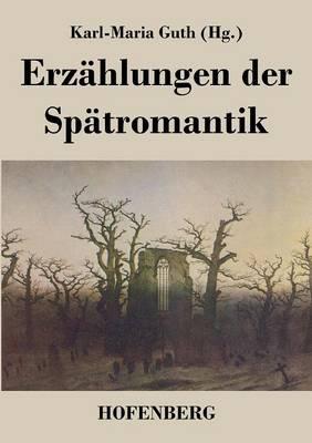 Erzahlungen Der Spatromantik (Paperback)