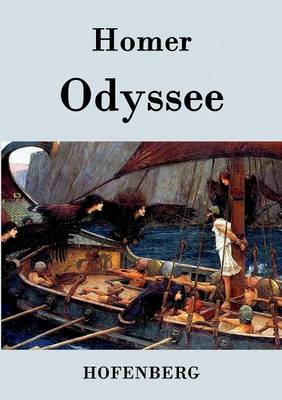 Odyssee (Paperback)