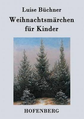 Weihnachtsmarchen Fur Kinder (Paperback)