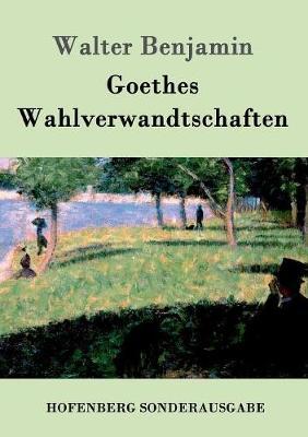 Goethes Wahlverwandtschaften (Paperback)