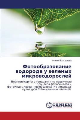 Fotoobrazovanie Vodoroda U Zelenykh Mikrovodorosley (Paperback)