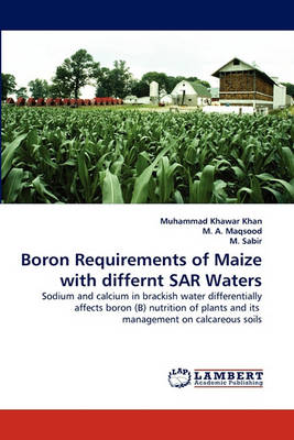 Boron Requirements of Maize with Differnt Sar Waters (Paperback)