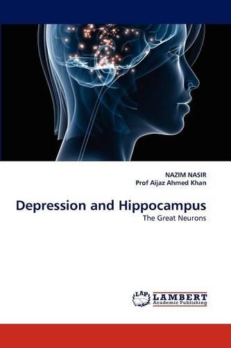 Depression and Hippocampus (Paperback)