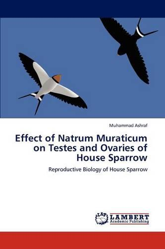 Effect of Natrum Muraticum on Testes and Ovaries of House Sparrow (Paperback)