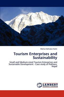 Tourism Enterprises and Sustainability (Paperback)