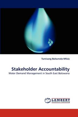 Stakeholder Accountability (Paperback)