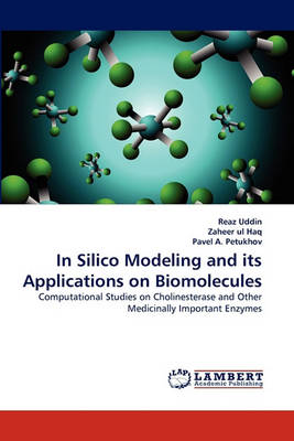 In Silico Modeling and Its Applications on Biomolecules (Paperback)