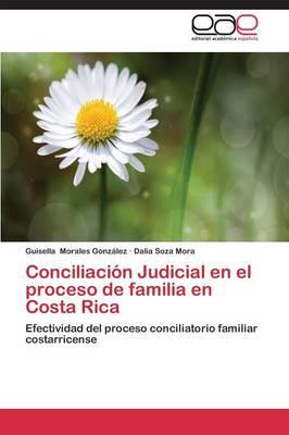 Conciliacion Judicial En El Proceso de Familia En Costa Rica (Paperback)