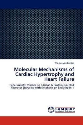 Molecular Mechanisms of Cardiac Hypertrophy and Heart Failure (Paperback)
