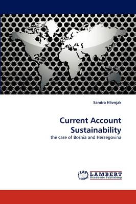 Current Account Sustainability (Paperback)