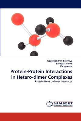 Protein-Protein Interactions in Hetero-Dimer Complexes (Paperback)